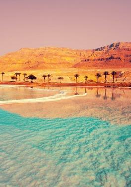 Jordan Desert - City - Beach Multi Centre