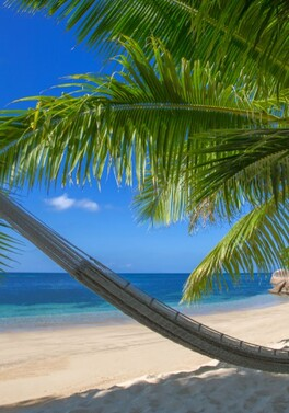 Coco de Mer Seychelles - relax surrounded by nature