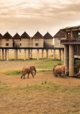 3 night safari and 9 nights all inclusive Mombasa beach stay